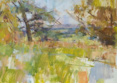Coleshill oil on canvas 40x30cm 2016