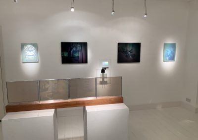 Cool Holograms_installed_2